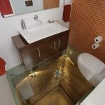 scary toilet glass floor 3