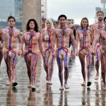 Circulatory System Body Art 3