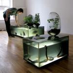 Desk Aquariam