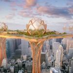 Lotus City 3