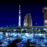 Panasonic Tokyo Hotaru Image 1