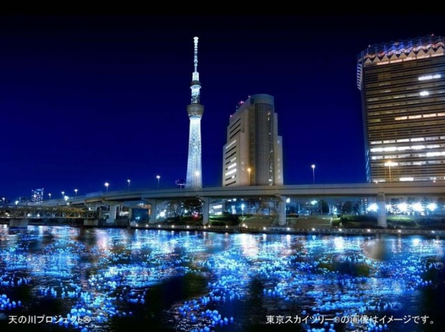 Tokyo Hotaru photo by JeremyV