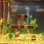 mario fishtank 1