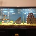 mario fishtank 3