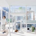 transparent house 5