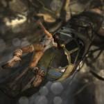 Tomb Raider 2013 plane jumping Image