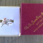 star trek silver ring 4