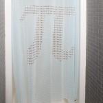 Pi Shower Curtain