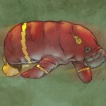 Flash Manatee