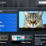 Catscom