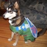 Link Dog