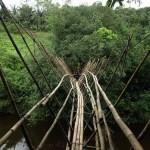 Sarawak, Borneo