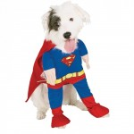Superman's Dog