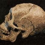 skull_from far