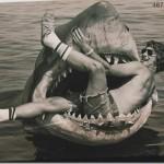 Jaws BTS