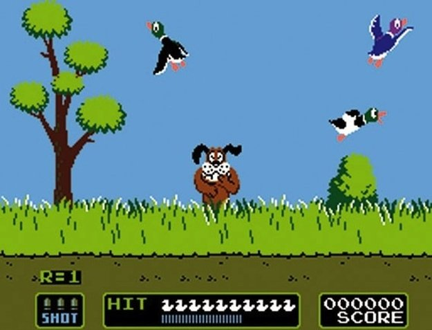 Duck Hunt II