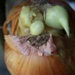 Onion of your nightmares