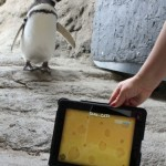 penguin ipad game 3
