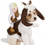 star-wars-dog-costumes-3