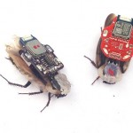 RoboCoach Smartphone App Insect Cyborg 2