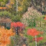 Hal Lasko Pixel Art MS Paint