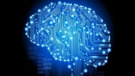 IBM Human Brain image