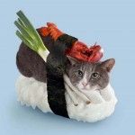 Neko-Sushi Sushi Cats Tange and Nakimushi Peanuts