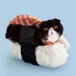 Neko-Sushi Sushi Cats Tange and Nakimushi Peanuts 4