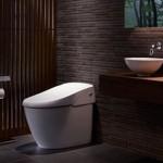 Customizable Smart Toilet 4