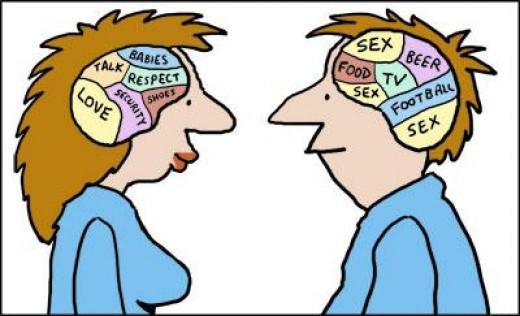 Men Women Brains
