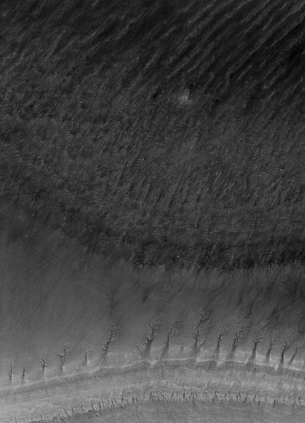 Sedimentary Strata