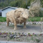 Straw Bull