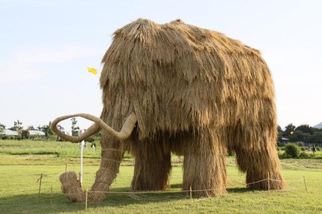 Straw Mamooth