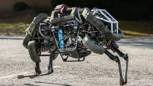 Boston Dynamics Wild Cat