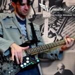Guitar Wing 01