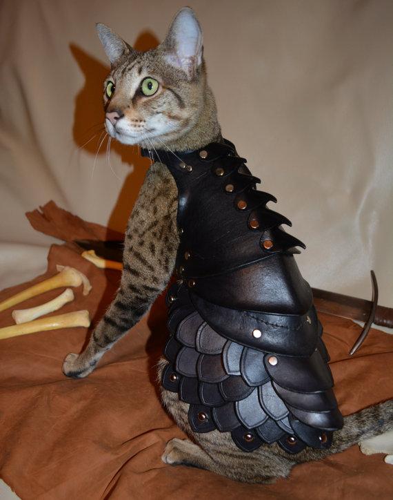 cat-armor-1