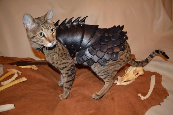 cat-armor-2
