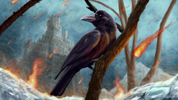 The 3-eyed crow