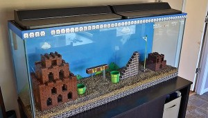 Super Mario Bros. Aquarium by Kelsey Kronmiller image 1