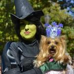The Wicked Witch & Glinda