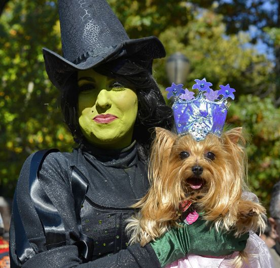 The Wicked Witch & Glinda