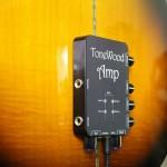 ToneWoodAmp Digital Effects Guitar Amplifier 3