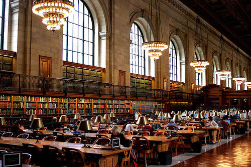 Library science degree