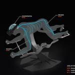 HYVE Virtual Reality Home Gym 04