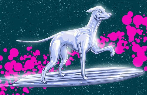 Silver Surfer dog