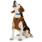 Chewbacca Dog Harness