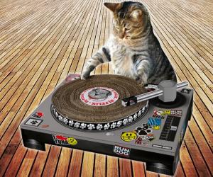 Cat-scratch-turntable-4