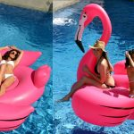 cool Pool Floats Gigantic Flamingo