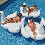 cool Pool Floats Leisure Giant Swan