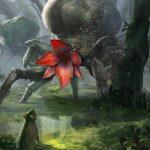 Arachas